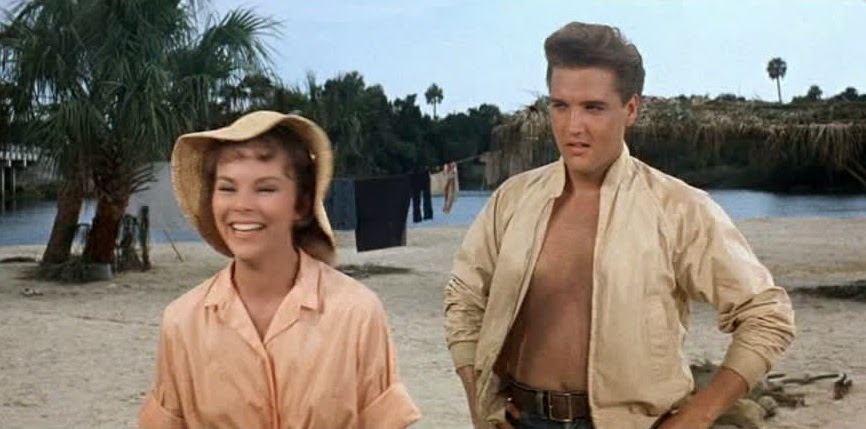 Image result for anne helm in follow that dream